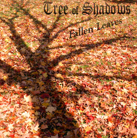 fallen leaves lyric: